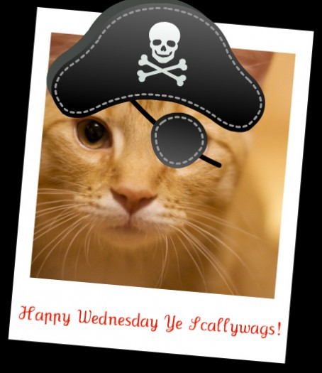 Watson Wednesday: Ahoy Mateys!